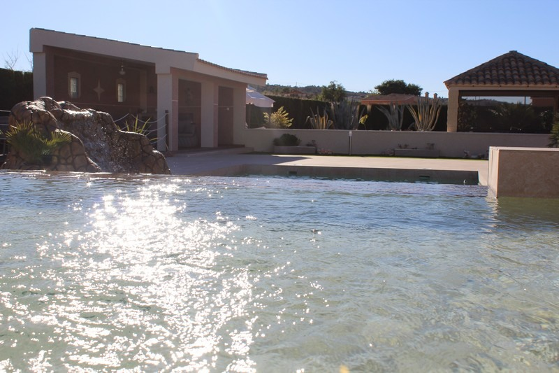Garden-and-swimming-pool-build-leddy-contractors-24