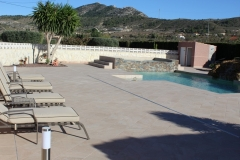Garden-and-swimming-pool-build-leddy-contractors-21