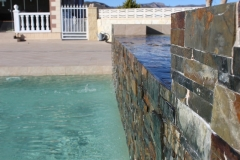 Garden-and-swimming-pool-build-leddy-contractors-27